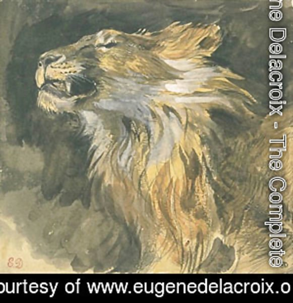 Eugene Delacroix - Head of a Lion