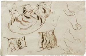 Eugene Delacroix - Sheet Of Studies Of A Sleeping Cat