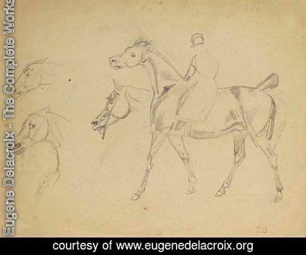 A figure riding a horse in profile to the left, with three subsidiary studies of the horse's heads
