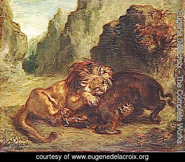 Lion and boar