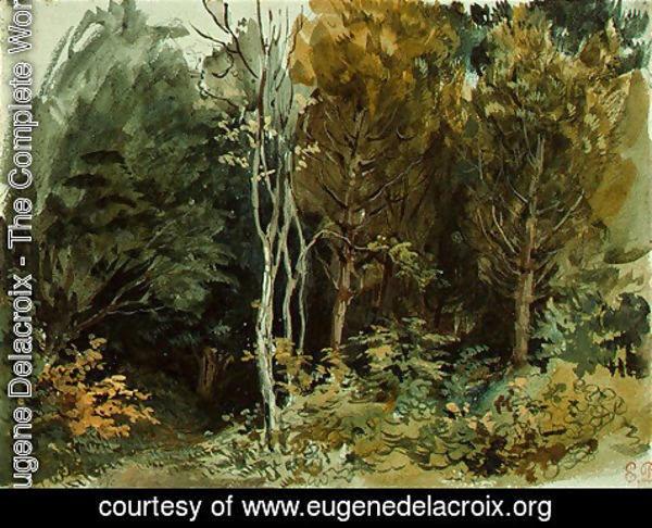 Eugene Delacroix - The Edge of a Wood at Nohant